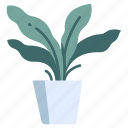 garden, pot, gardening, potted, plants, fern, leaf icon