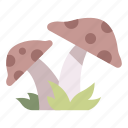 forest, garden, mushroom, nature, plant icon