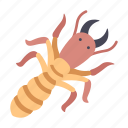 damage, insect, pest, termite, wood icon