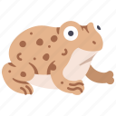 amphibian, frog, nature, toad, wildlife icon
