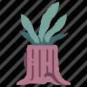 nature, plant, pot, stump, tree, wood icon