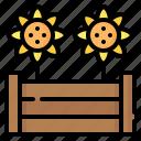raised bed, flower, sunflower, gardening, wooden