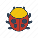 beetle, bug, gardening, insect, pest icon