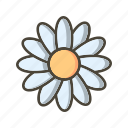 daisy, flower, garden icon