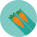 carrot, carrots, food, fresh, leaf, nature, red icon