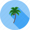 beach, coconut, palm, summer, tree, trees, tropical