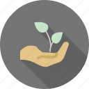 agriculture, coffee, field, green, nature, plantation, tea icon