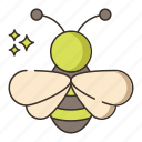 bee, bug, honey, insect