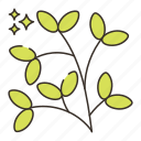 branch, leaves, nature, tree