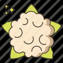 cauliflower, cooking, food, vegetable