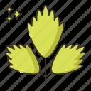 food, parsley, vegetable icon