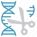 cloning, dna, editing, engineering, gene, genetics, target icon