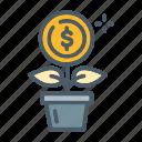 dollar, flower, growth, plant, savings