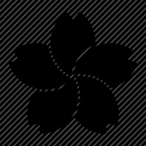 Japan, flower, sakura, beauty, bloom icon - Download