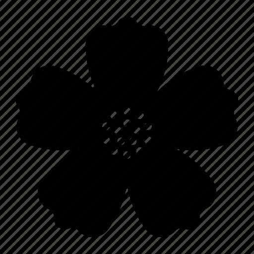 bloom, flower, hibiscus icon