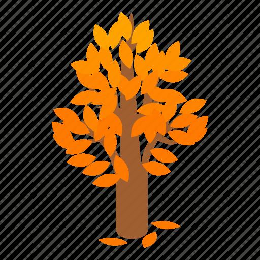 autumn, branch, isometric, leaf, nature, plant, tree icon