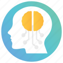 anatomy, brain, head, human brain, mind icon