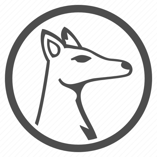 animal, animals, audit, bloodhound, dog, fox, seo icon