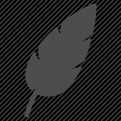 blog, blogging, edit, feather, school, write esse, writing icon