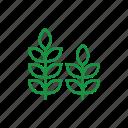 green, plants, grass