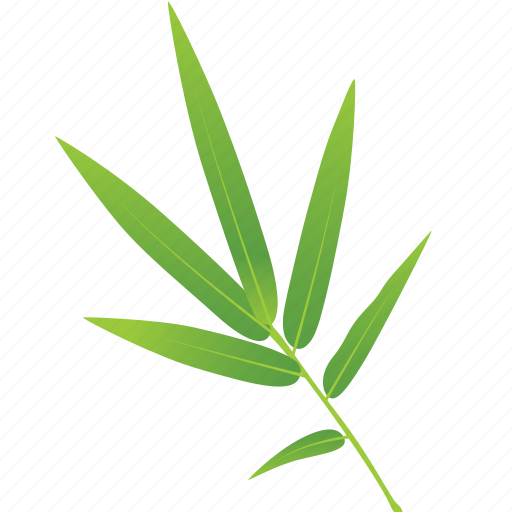 bamboo, green, leaf, leaves, nature, tree icon