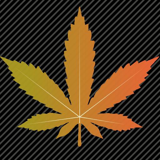 leaf, leaves, maple, marijuana, nature, tree icon