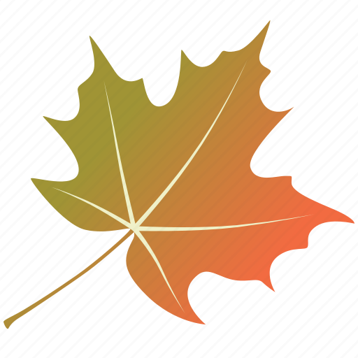 leaf, leaves, maple, natural, nature, sycamore, tree icon