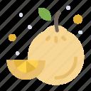 food, fruit, lemon