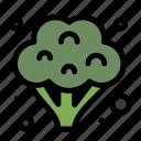 broccoli, food, vegetables