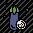 eggplant, food, vegetable