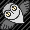 bird, halloween, night, owl, wise