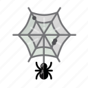death, halloween, horror, monster, sacry, spider, spider web icon