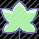 bloom, easter, flower, halloween, leaf, religion icon