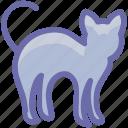 black cat, black evil cat, dreadful, evil cat, fearful, horrible, scary icon