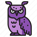 night, spooky, bird, animal, owl