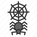 cobweb, halloween, insect, scary, spider, spider web icon