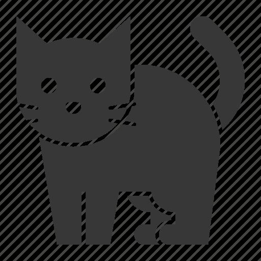 animal, black cat, cat, halloween, horror, pet, scary icon