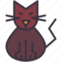 black cat, cat, evil, feline, kitten, kitty, purr icon