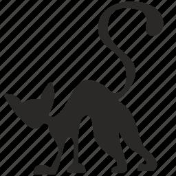 animal, cat, halloween, horror, ugly icon