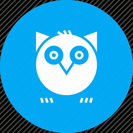 bird, halloween, hoot, horror, night, owl, spooky icon