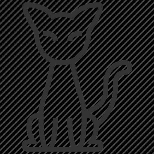 Halloween, animal, black cat, cat, monster, night, pet icon - Download on Iconfinder