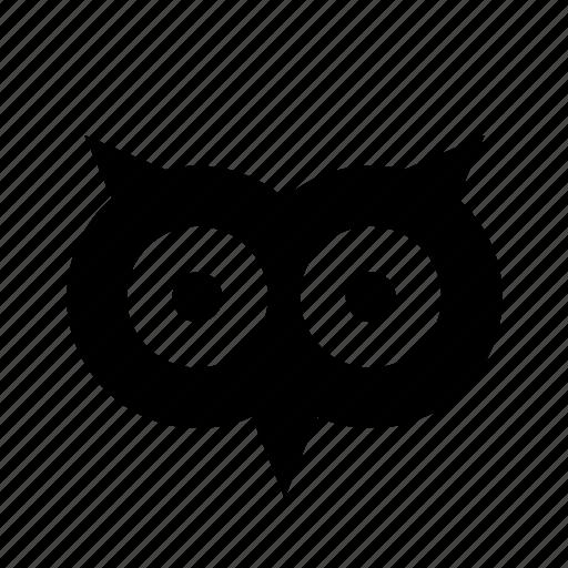 Celebration, festival, halloween, animal, bird, eyes, owl icon - Download on Iconfinder