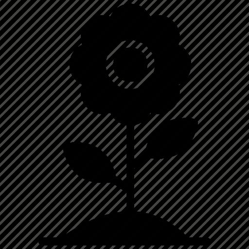 blossom, flower, flower vase, nature, spring flower icon
