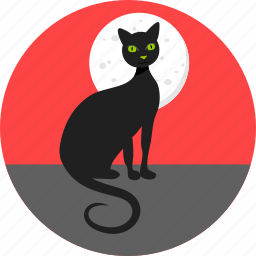 bad luck, black cat, cat, halloween, kitty, moon, superstition icon
