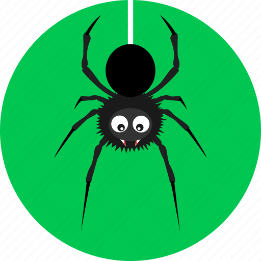 beetle, bug, halloween, horror, insect, poison, spider icon