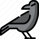 ghost, party, halloween, night, animal, crow icon