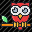 bird, character, cute, halloween, night, owl