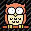 bird, halloween, owl, animal