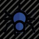 animal, halloween, horror, pest, silhouette, spider