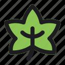 halloween, leaf, nature, plant, tree icon